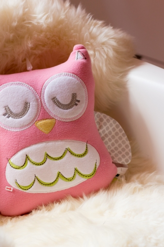 Couldn't resist this cute little owl.