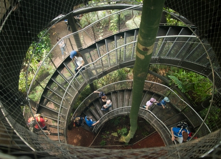 Stairwell to canopy walk in Rainforest Hall